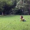 子を持つ全ての親へ、川崎病って知っていますか?