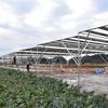 ソーラーシェアリング:匝瑳2号機の建設が進んでいます - 匝瑳市飯塚開畑地区ソーラシェアリング