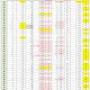 新型コロナウイルス、都道府県別、週間対比・感染被害一覧表 (6月18日現在)