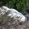 ちょこ話:熊本の落ちた巨石、2400円で落札されたってよ(/・ω・)/