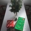お金をかけずに楽しむ特別なクリスマス