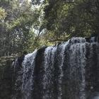 日田市天瀬町の散策に欠かせない涼スポット『桜滝』