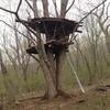 糸井重里さんのアイデアからツリーハウス
