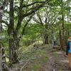 夏至に入るカヤハゲ遊山 頂から