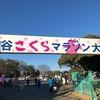 今年も参戦!第29回熊谷さくらマラソン