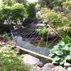 「庭いじりの贅沢」「鯉が鷺に食べられた。」(8)鷺対策に釣り糸(テングス)を張った。
