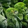 迷信百科 ―祈祷と疫病―