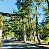 偶然とセミと夏の『岡山・吉備津神社』