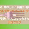 【ヴロツワフ】セルフサービスレストラン|安い・美味しい・綺麗・便利揃い!