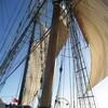 ヨットと帆船の違い