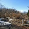 「海、川、山、皇居」ラン&極めつけのドMラン。意外に盛り沢山だった1月。