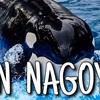 旅動画「IN NAGOYA」