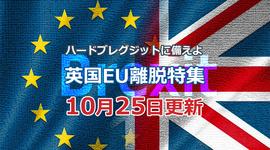 「12月英総選挙の可能性は?」ハードブレグジットに備えよ!英国EU離脱特集