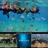 人気スポットと体験ダイビング