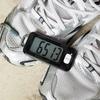 2か月半で700km歩いてもどこも痛まないウォーキングシューズ