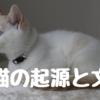 家猫(イエネコ)の起源と文化