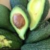 アボカド avocado ( pea Hawai'i )