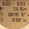 【マラソン日記】今季2度目の30km走