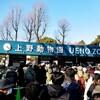 2019年、上野動物園ぶらぶら初めサマリー