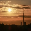天気と空と:2020-02-21〜02-25