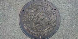 神奈川県愛甲郡愛川町のマンホール