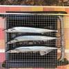 【キャンプ飯】炭火でさんまを上手に焼く方法