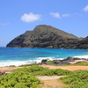 ハワイ・オアフ島、路線バスでビーチ巡り