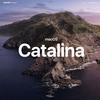 「macOS Catalina」の公式壁紙がダウンロード可能に