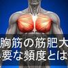 大胸筋を効率的に筋肥大させる筋トレ頻度を紹介!