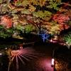2020年11月の京都旅行 2泊3日 1日目(後半)
