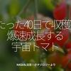 773食目「たった40日で収穫?!爆速成長する宇宙トマト」NASAも注目!@ナゾロジーより