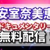 安室奈美恵の引退前のドキュメンタリーがhuluで無料配信はいつまで?