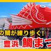 【愛知 鯛まつり】コイキングかよ!!デカカワイイ鯛神輿が街を泳ぐ!