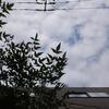 作曲工房 定点観察 2017-05-28(日)