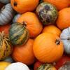 自家製かぼちゃサラダでお肌もきれいにダイエット!