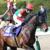 JRA札幌記念(G2)はラッキーライラックだけじゃない!? オルフェーヴル産駒のアノ期待馬がついに待望の復帰か!