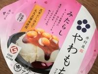 井村屋やわもちアイス「みたらし」のレビュー。やわもちアイス「みたらし」の美味しい食べ方。みたらし感が強すぎるのも考え物である。