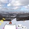 【北海道 スキー場編】キロロリゾート・札幌国際スキー場・サッポロテイネスキー場でスノーボードしてきたよ★【目次】