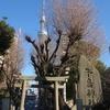 牛嶋神社 隅田公園 東京都墨田区向島