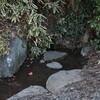 中舘観音寺の延命水