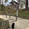 100名城・久保田城(秋田県)/桜は5部咲きだった【秋田紀行2】