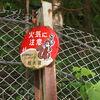 6月某日ひとり温泉旅 過去の思い出と栃木県・板室温泉へ('17)