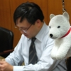 会計監査は犬のお父さんと一緒