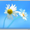 Mac miniで Parallels Desktop 8 for Macを使ってWindows 8をインストール