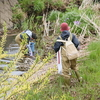 今年も和泉川の掃除をしました。