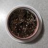 山桜を育てるミニ盆栽~種まき~