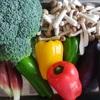 作っておくと便利な野菜レシピ