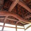 彦根城を散歩2(滋賀県彦根市)