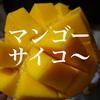 マンゴーの正しい切り方!