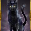 人狼ジャッジメント【人狼J】:黒猫をすこれ!